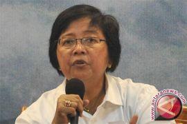 Menteri LHK memantau karhutla meski libur Lebaran