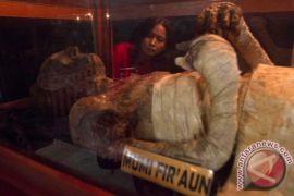 Mumi menjerit dipamerkan di Museum Mesir