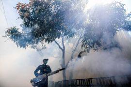 Warga Yogyakarta diminta waspadai penyakit disebabkan virus
