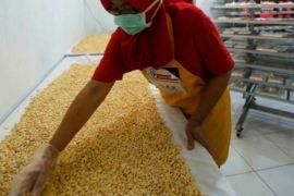 Sarihusada mendukung kemandirian pangan dan ekonomi masyarakat