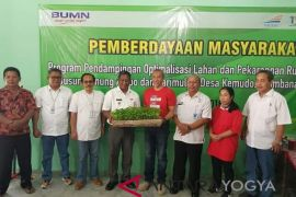 BUMN  bantu optimalisasi lahan pekarangan