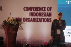 Sripeni punya PR tingkatkan elektrifikasi NTT-Papua