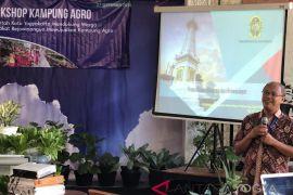 Potensi pertanian kampung dimaksimalkan jaga ketahanan pangan