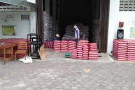 Bantul produksi benih padi 200 ton setahun