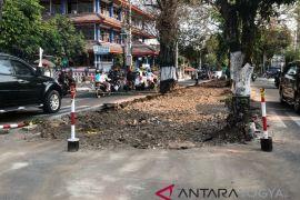 Pohon di Boulevard Suroto Yogyakarta dipangkas agar tak bahayakan pengguna jalan