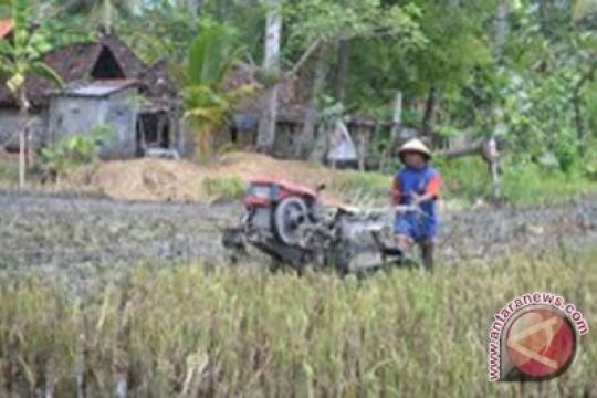 Kulon Progo bagikan traktor percepat pengolahan tanah