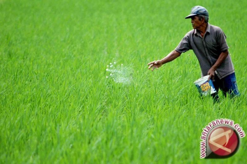 Bupati Pembangunan Pertanian Sleman Diarahkan Pada Agribisnis