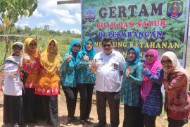 Maksimalkan Lumbung Pangan, Pemprov Bantu Modal Kelompok Petani