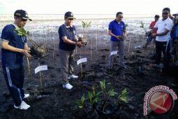 Bupati Seruyan Ajak Masyarakat Pesisir Kembangkan Mangrove