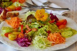 Ingin diet vegetarian jangan kuatir kurang gizi, asal lakukan hal ini