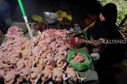 Harga daging ayam di Buntok terus alami kenaikan