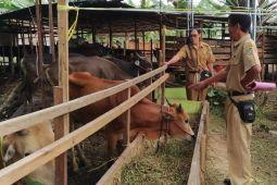 Penjualan hewan kurban di Barut meningkat