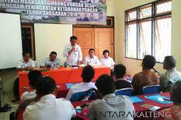 Pemkab Barito Utara kembangkan lumbung pangan desa