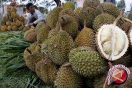 Tahukah Anda kandungan gizi dalam durian?