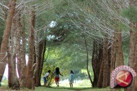 Pemkab Gumas Siapkan 4.119 Hektar Kawasan Tahura