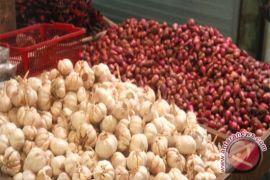 Harga bawang di Seruyan sudah turun