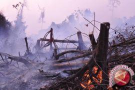 Palangka Raya tingkatkan kewaspadaan antisipasi Karhutla