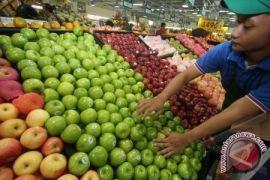 Konsumsi Makanan Ini, Agar Otak Sehat