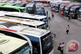 Penumpang bus Muara Teweh mulai melimpah