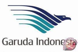 Internet gratis dalam penerbangan segera hadir di Garuda dan Citilink