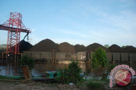 Ekspor Kalteng triwulan II/2018 diperkirakan meningkat