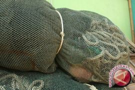 Laporkan bila ada oknum tangkap ikan secara ilegal di Barsel