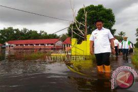 Bupati Pulpis Tinjau Lokasi Banjir