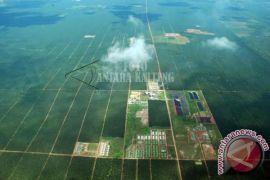 DPRD Kotim ingatkan perusahaan perkebunan sawit wajib bangun plasma