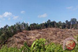 Tahura Lapak Jaru Jadi Hutan Edukasi di Gumas