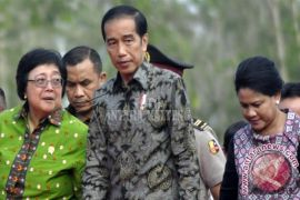 Presiden Jokowi Perintahkan Kalteng Jadi Lumbung Padi Organik