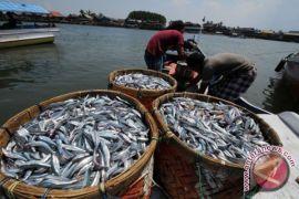 Sumber Protein Tinggi, Masyarakat Diajak Perbanyak Konsumsi Ikan