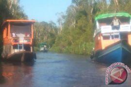 Dua turis mancanegara dikabarkan menghilang di Tanjung Puting