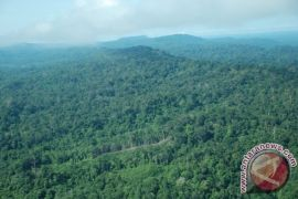 Dishut Pastikan Masyarakat Punya Akses Kelola Hutan