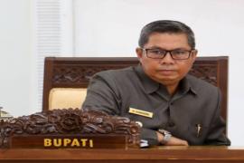Mantap! Bupati Seruyan Promosikan Potensi Daerah ke India