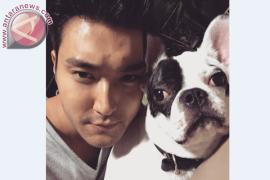 Aksi Siwon Super Junior yang membuat GBK memanas