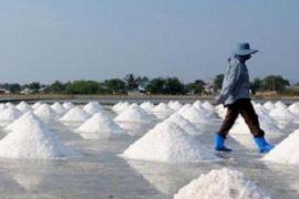 Kenali tanda-tanda berlebihan konsumsi garam