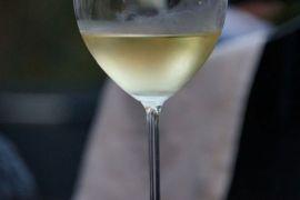 Ternyata Pembuatan Anggur Sudah dari 5980 SM, Ini Penjelasan Peneliti