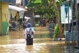 Banjir Luapan Sungai Barito Meluas
