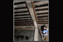 Realisasi Pajak Sarang Walet Barut Capai Rp53,9 Juta