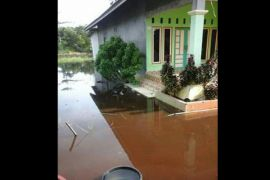 Tanggul Jebol, Perusahaan Pulpis Diminta Bantu Tangani Banjir