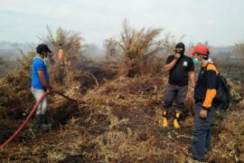 BPBD Kotim imbau masyarakat tak bakar lahan