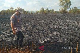Warga Palangka Raya mulai cium asap kebakaran lahan
