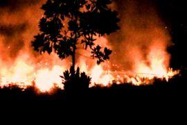 482 hektare lahan di Kalteng terbakar