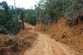 Dishut Kalteng tindaklanjuti laporan perusakan di Tahura Gumas