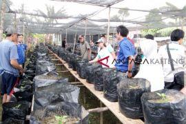 Program CSR Adaro dorong tingkatkan perekonomian masyarakat