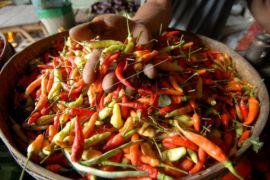 Harga cabai rawit di Seruyan naik tajam