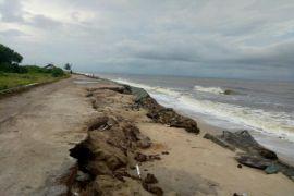 Melihat Pantai Ujung Pandaran rusak parah akibat abrasi, begini tanggapan wisatawan