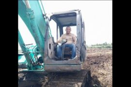 DKPP optimistis produksi padi Seruyan meningkat, ini alasannya