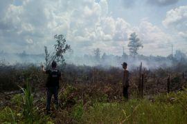 Diduga mulai ada yang membakar lahan di Sampit