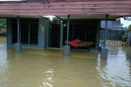 Banjir di Muara Teweh mulai surut